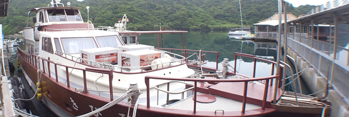 boat ボートダイブ(4~10月開催)